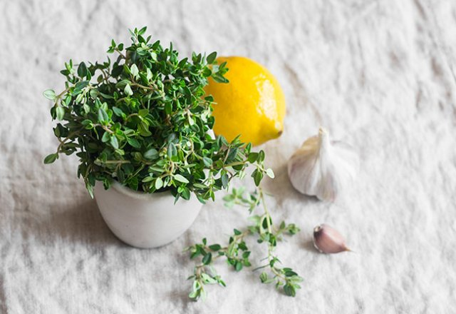 The powerful healing nature of herbs